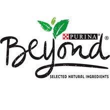 Purina Beyond® kat